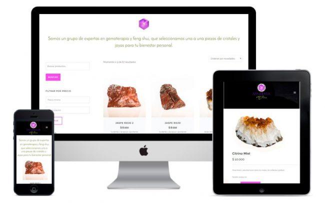 Desarrollo de tienda virtual, ecommerce, tienda online